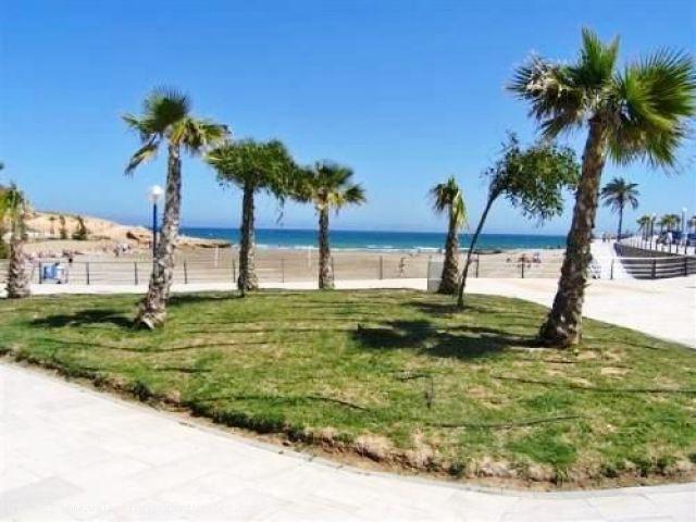 ea_03_detached_playa_flamenca_beachside_front_line