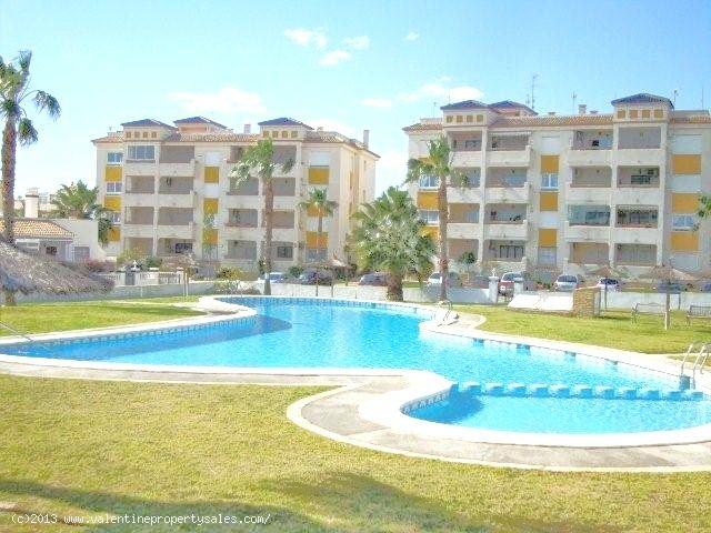 ea_jumilla_bungalow_playa_flamenca_15_13814026942
