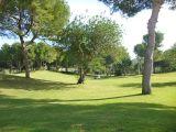 ea_las_ramblas_golf_villa_for_sale_7jpg_1451317301